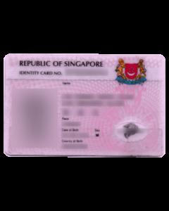 Singapore Citizenship Application